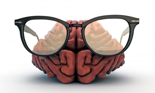 depositphotos_24539377-stock-photo-big-brain-with-black-glasses